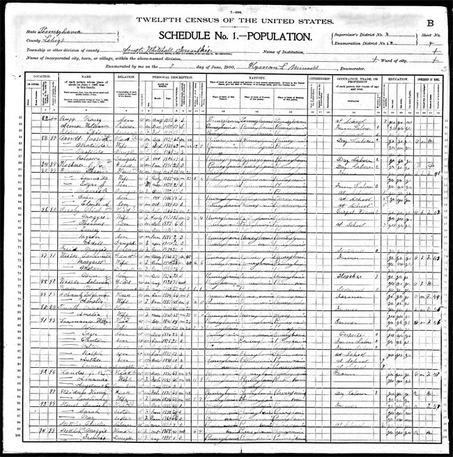 Emanuel Wisser in 1900 census