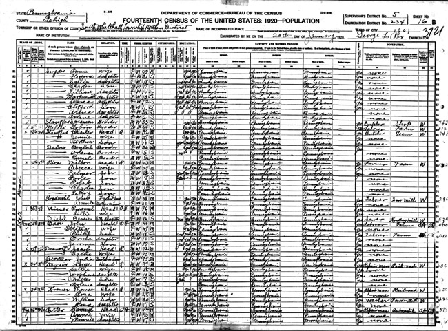 Emanuel Wisser in 1920 census